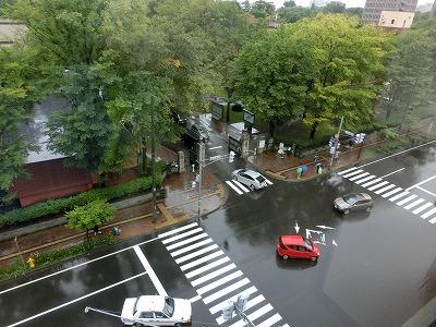 雨の北大正門