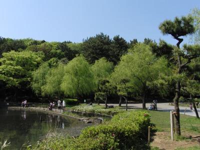 大池公園の緑