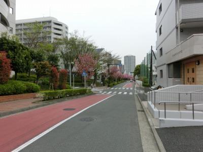 銀行への道