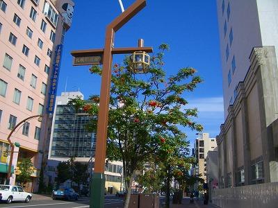 ナナカマドと札幌の空