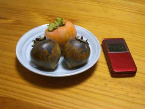 収穫した黒柿