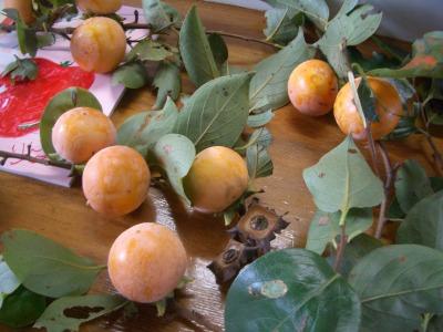 下川井の柿