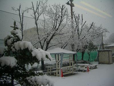 東戸塚は雪